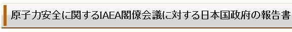 IAEA-houkoku-20110618.jpg